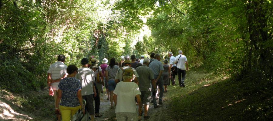 Balade nature entre Berry et Touraine